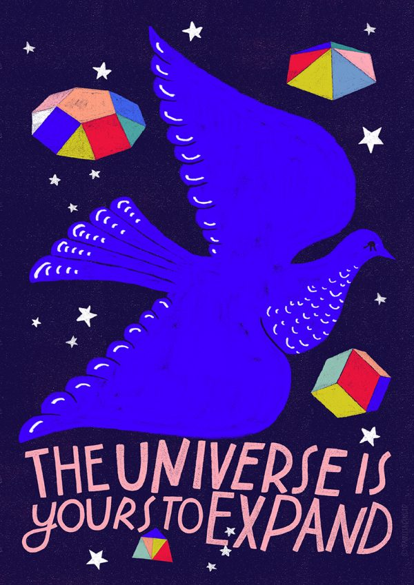 Intergalactic Pigeon by Vanessa Binder